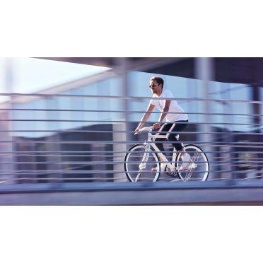 Vélo Fixie / Singlepseed Schindelhauer Siegfried