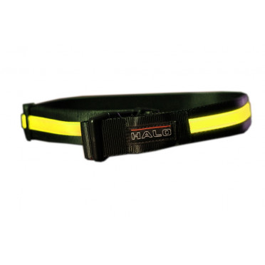 HALO BELT Jaune